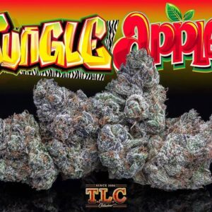 Jungle boys Jungle Apples
